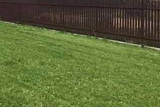 Lauko darbai - Vejos apželdinimas, aplinkotvarka, vejos įrengimas